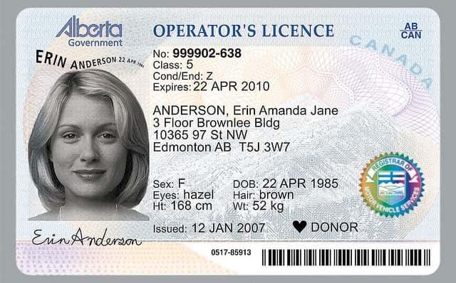 Car Insurance For Class 7 in Alberta - StingyPig.ca