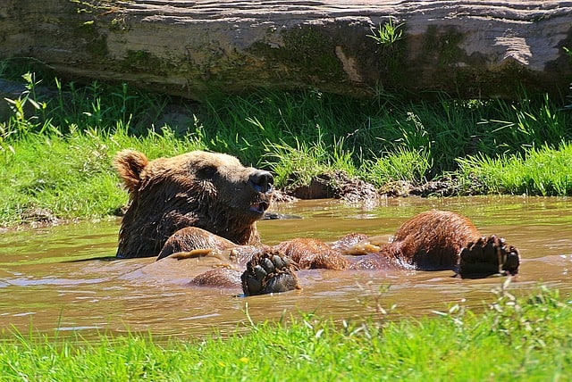 Cooling Down