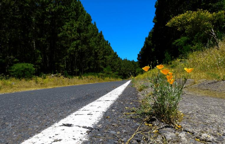 light off road