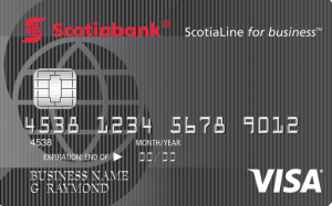 Top 10 Best Business Credit Cards Canada Stingypig